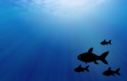 Underwater scene with fish. Royalty Free Stock Photos