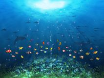 Underwater scene with fishes Stock Images