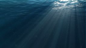 Underwater scene. Large popular marine background. High-quality loop animation of ocean waves. The rays of light shone. Large popular marine background stock footage