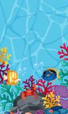 Underwater scene with many fish and corals. Illustration Stock Images