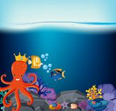 Underwater scene with octopus and fish. Illustration Royalty Free Stock Photo