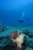 Underwater scene : scuba diver in deep water Royalty Free Stock Photo