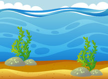Underwater scene with seaweeds. Illustration Royalty Free Stock Photography