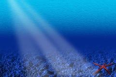 Underwater scene Stock Image