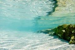 Underwater Scene Sunlight, fish and water surface. Underwater Li. Fe. Sea Underwater royalty free stock image