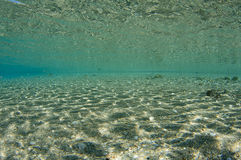 Underwater Scenery Royalty Free Stock Photo