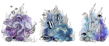 Underwater scenery with octopus, seaweeds and tropical fishes.
