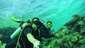 Underwater Scuba Diving Tourists with an Instructor in Red Sea,. EGYPT, SOUTH SINAI, SHARM EL SHEIKH, DECEMBER 7, 2016: Underwater Scuba Diving Tourists with an stock footage