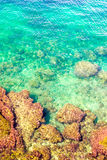 Underwater sea background. Blue transparent turquoise water. Stock Image