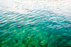 Underwater sea background. Blue transparent turquoise water. Stock Images