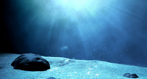 Underwater Sea Floor Royalty Free Stock Images