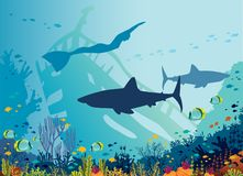 Underwater sea - freediver, shark, coral reef. Silhouette of big sharks, freediver, coral reef and tropical fishes in a blue sea background. Vector illustration stock image