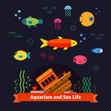 Underwater sea life. Aquarium Royalty Free Stock Photos