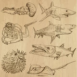 Underwater, Sea Life (vector set no.2) - hand drawn. Underwater, Sea Life (vector set no.2)  - Collection of an hand drawn illustrations. Description: Each Stock Image