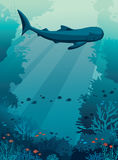 Underwater sea - whale shark, coral reef and fishes. royalty free illustration