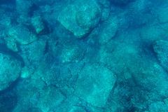 Underwater seabed with sunlight Royalty Free Stock Photos