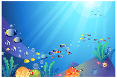 Underwater sealife. The view of Underwater sealife Royalty Free Stock Photos