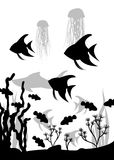 Underwater seascape with fish and algae. Hand vector drawing Royalty Free Stock Photos