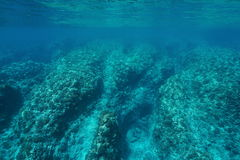 Underwater seascape rocky ocean floor coral reef. Underwater seascape rocky ocean floor with corals on the outer reef slope, Pacific ocean ,Huahine, French Royalty Free Stock Photography