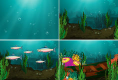 Underwater. Set of four underwater scenes Royalty Free Stock Photo