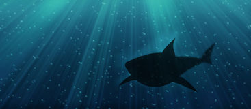 Underwater shark. Illustration of  a shark lurking in the deep sea Stock Photo
