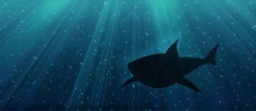 Underwater shark. Illustration of a shark lurking in the deep sea vector illustration