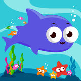 Underwater shark Royalty Free Stock Photography