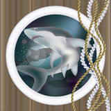 Underwater ship porthole with shark, vector Stock Image