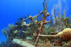 Underwater ship wreck Stock Photo