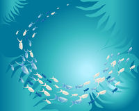 Underwater shoal of fish Royalty Free Stock Images
