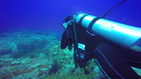 Underwater shoot of a scuba divers swimming in blue clear water. stock footage