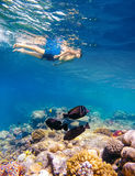 Underwater shoot of a young boy snorkeling in red sea. Underwater shoot of a young boy snorkeling and diving in a tropical red sea coral reef with butterfly fish stock photo