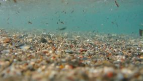 Underwater shooting. Sand, beach pebbles and waves close-up. Cle. Ar clear sea water stock footage