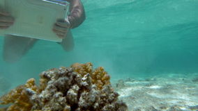 Underwater shooting with tablet computer stock footage