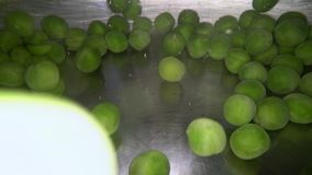 Underwater shot of green peas being dropped into the water. Cooking vegetables in metal pot.  stock video footage
