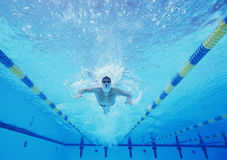 Underwater shot of male swimmer swimming in pool Royalty Free Stock Image