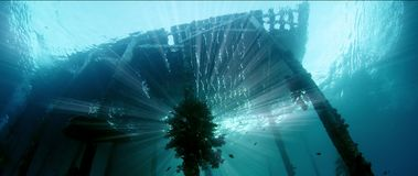 Underwater shot of an old jetty, overgrown with soft corals, silhouette with sunbeams. Raja Ampat, Indonesia stock video footage