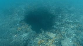 A huge sinkhole underwater. An underwater shot showing a huge sinkhole on the ocean floor. Coral covers the surrounding of the ocean floor stock footage