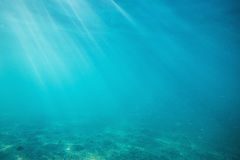 Underwater shot with sunrays and fish in deep tropical sea Royalty Free Stock Image