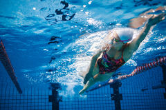 Underwater shot of swimmer training in the pool Royalty Free Stock Photography