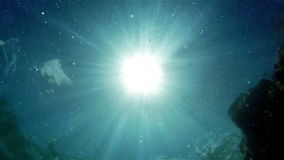 An underwater shot of a swimming man against bright sunshine.Slow motion video. stock video