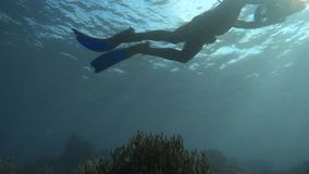 Two scuba divers with sea scooter. An underwater shot of two scuba diver with scooter stock footage