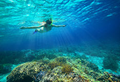Underwater shot of a woman snorkeling in the sun Royalty Free Stock Images