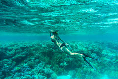 Underwater shot of the young lady gliding over vivid coral reef on a breath hold in sea water. Underwater shot of the young lady gliding over vivid coral reef on Stock Images
