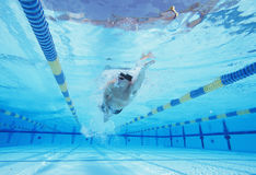 Underwater shot of young male athlete swimming in pool stock photos