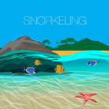 Underwater  snorkeling in a clear tropical water at coral reef. Royalty Free Stock Photography