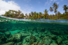 Underwater split shot of the sea rocky bottom Stock Photography