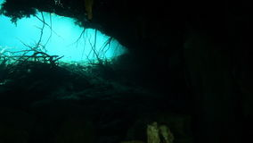 Underwater stalactites in Mexico cenote. Underwater stalactites and stalagmites in landscape Mexico Sacred Mayan Cenote. Deep underground clean and clear fresh stock footage