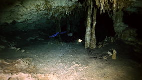 Underwater stalactites in Yucatan Mexican cenote. stock video