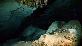 Underwater stalagmites in Yucatan Mexican cenote. Underwater stalactites and stalagmites in landscape Mexican Sacred Mayan Cenote. Deep underground clean and stock video footage